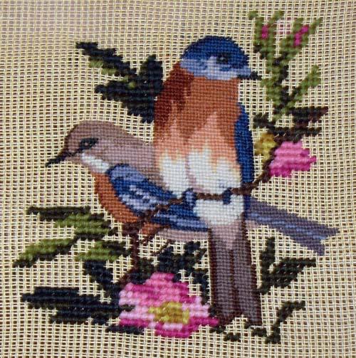 new york state bird bluebird. State: New York State Bird: